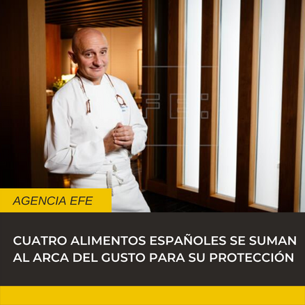 Noticia parto (1).png