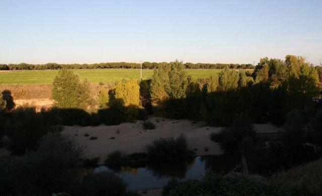 Río Adaja a su paso por Valdestillas