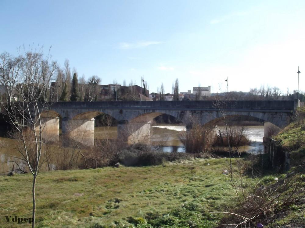 Río Duero a su paso por Tudela de Duero
