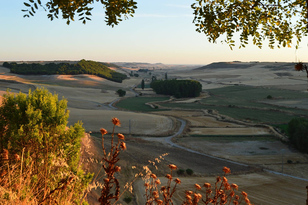 Valle de Hornija