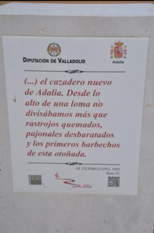 Adalia Delibes