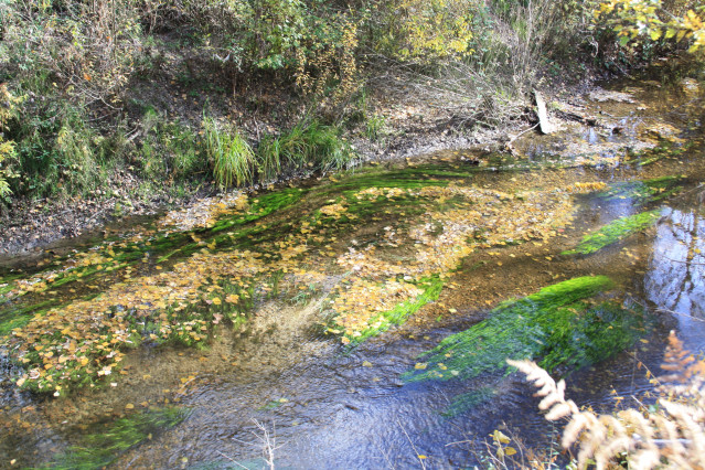 Río Cega en la Senda de los Pescadores