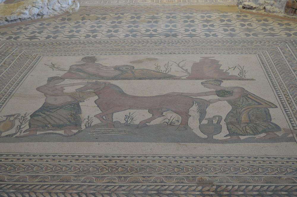 Mosaico de Pegaso Valladolid