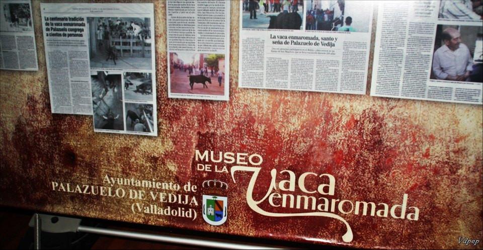 Museo de la vaca enmaromada de Palazuelo de Vedija