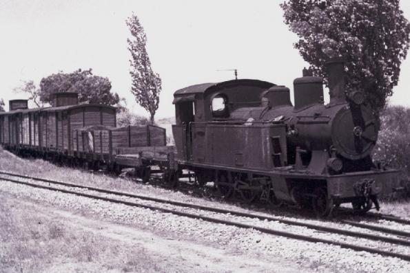 El Tren Burra