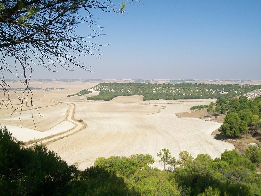 Vista general desde Villalar. Foto: Jorge Urdiales.