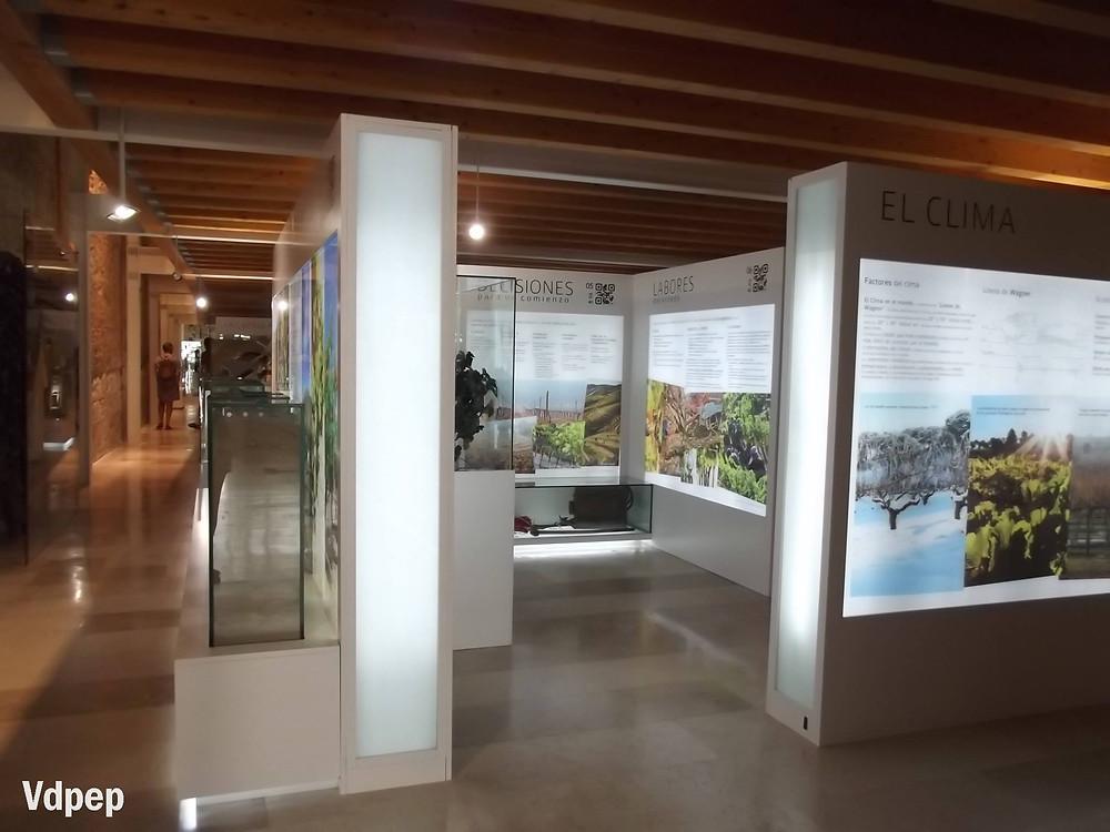 Museo Provincial del Vino de Peñafiel