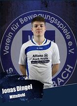 Jonas Dingel.png