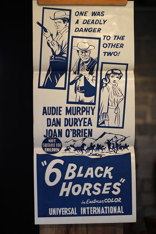 6 Black Horses - daybill