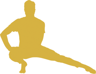 YOGA 1 GOLD.png