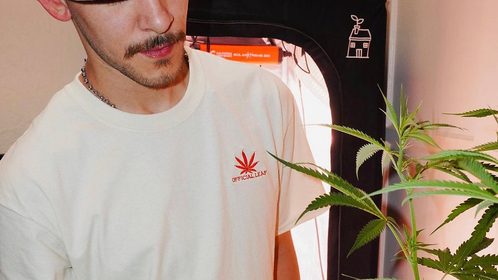 Georgia Pie T-shirt