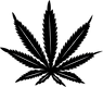 Official Leaf Original Logo.png