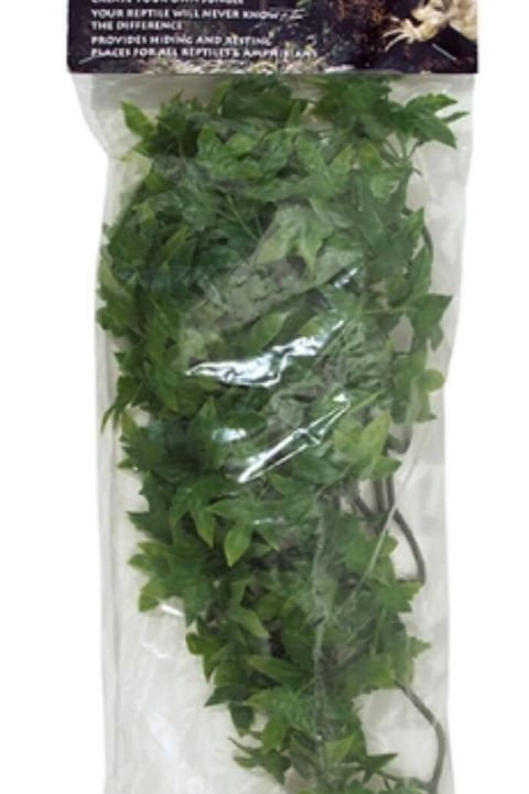 Zoo Med Congo ivy small 14 inch