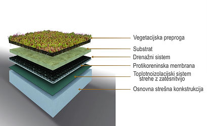 zelena streha splet.jpg