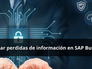 ¿Cómo evitar perdidas de información en SAP Business One?