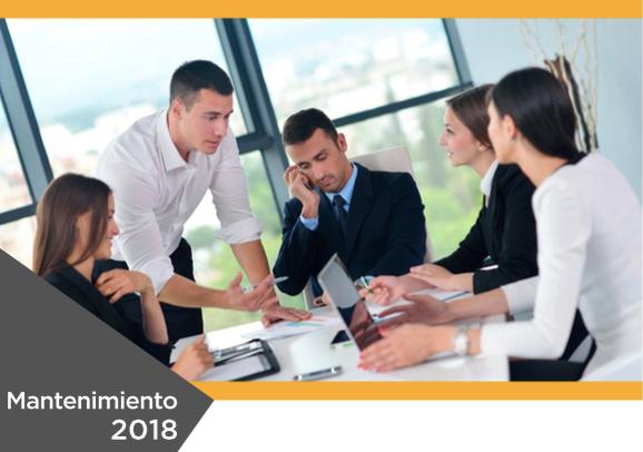 Brochure Mantenimiento SAP Business One