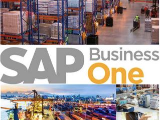 ¿Por qué las comercializadoras usan SAP Business One?