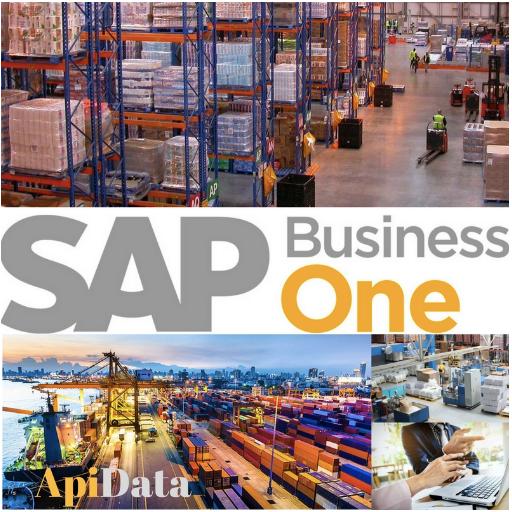 SAP Business One comercializadoras