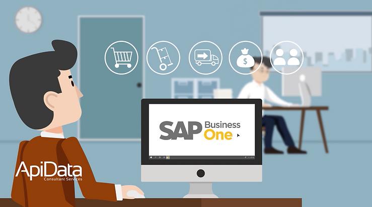 ApiData SAP Business One Partner.png