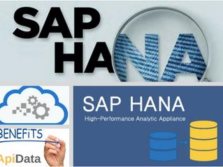 ¿Qué es SAP Hana y cuáles son sus beneficios para el negocio?