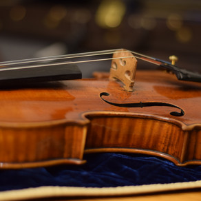 My new Guadagnini Violin