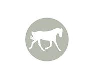 grey hoof (4).png