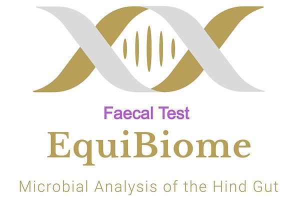 Equine Faecal Test Kit (UK)