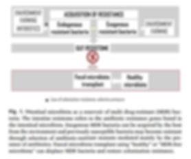 antibiotic resistancee.JPG