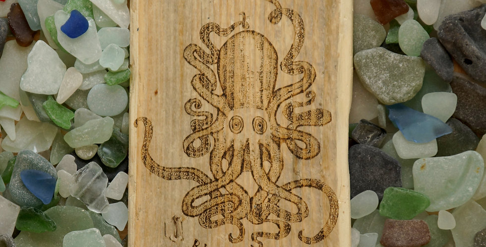 Octopus on a Large Cornish Driftwood Plank