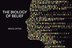 biology-of-belief