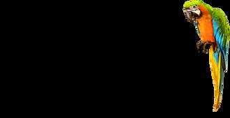 logo%20jousset%20parfums%20png_edited.pn