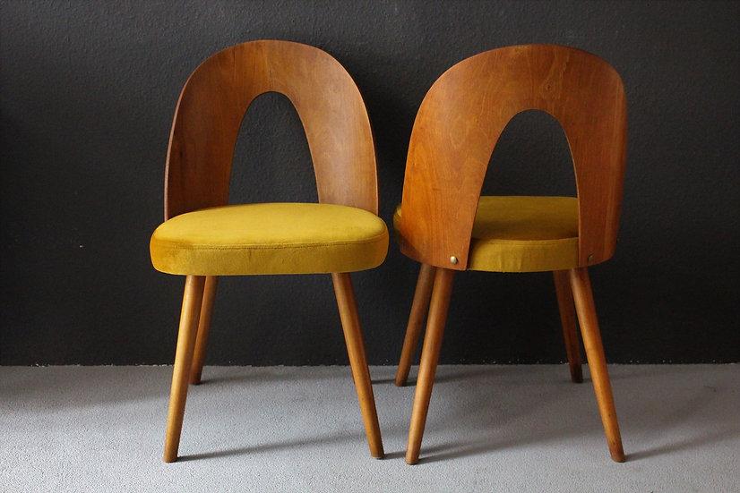 kleine fauteuils   Antonín Šuman   samt
