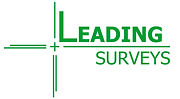 Leading%20Surveys%203_edited.jpg