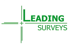 Leading Surveys 3.0 - Reduced.png