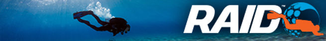 RAID-Banner-Dive1.jpg