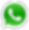 whatsapp-logo-icone (1).png