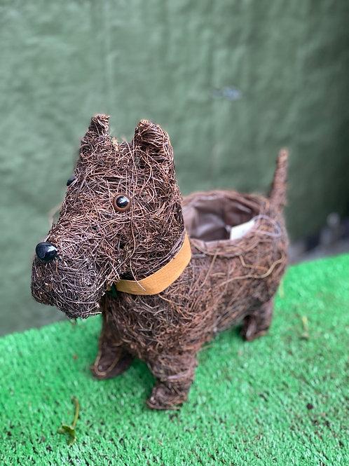 Dog Planter