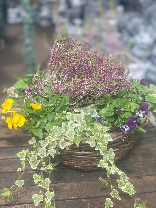 Wicker Hanging Basket Autumn 14""