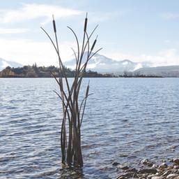 """""""Unbending Life"""" Reeds Sculpture"""