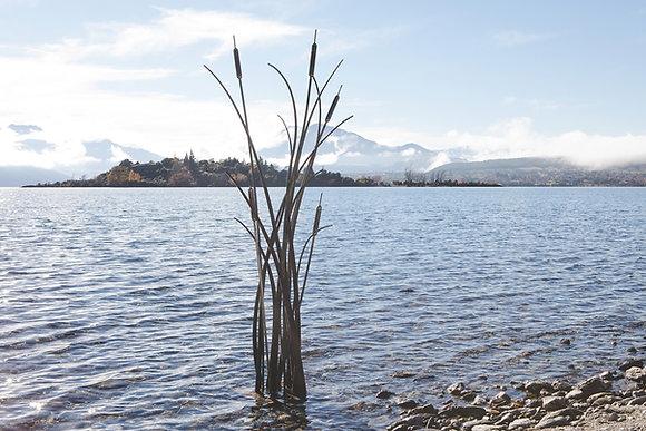 """""""Reeds"""" Sculpture"""