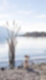 Metalworks Lake Shoot 54_WEB.jpg
