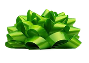 green gift bow 2.png