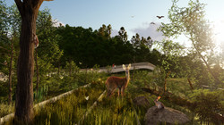 Eco Bridge