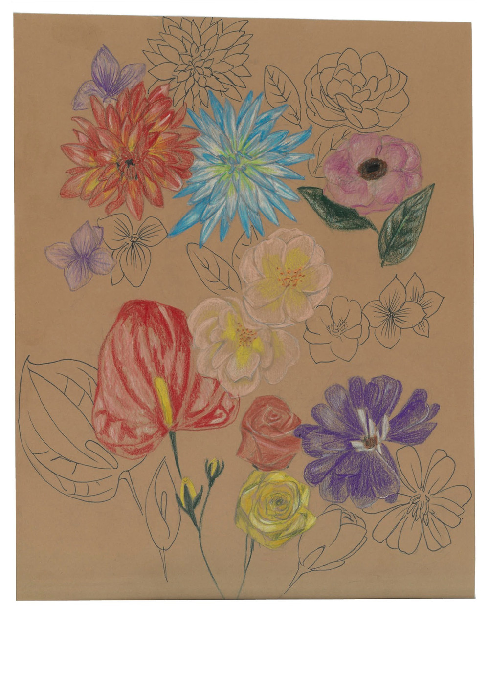 Bloom where you are planted. An illustration of flowers using pencil crayon.
