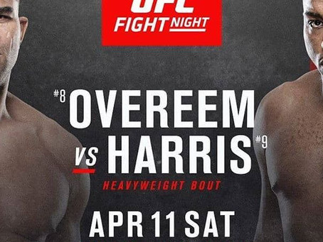 UFC Fight Night 176 Preview