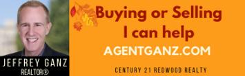 Jeffrey Ganz_banner ad.png