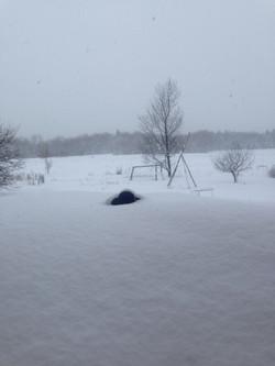 snow gauge.jpg