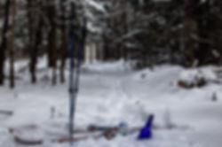 Ski_blue_bottle.jpg