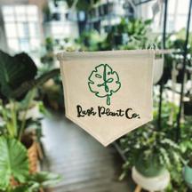 Lush Plant Co.