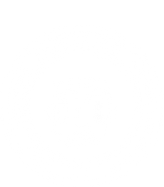 digital coin vector.png